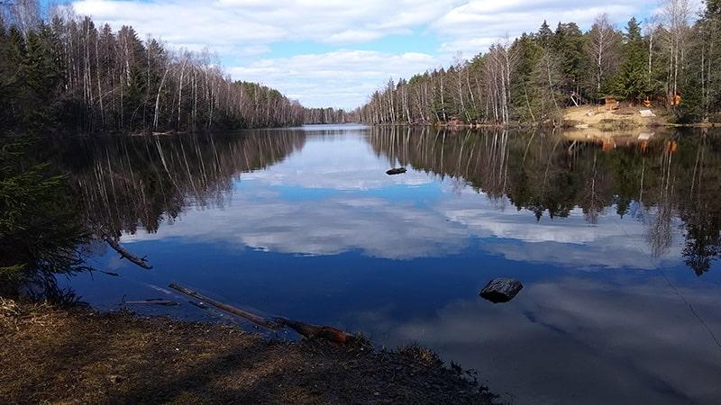 природа ленинградской области Долгое(ныне Длинное) озеро всеволожск