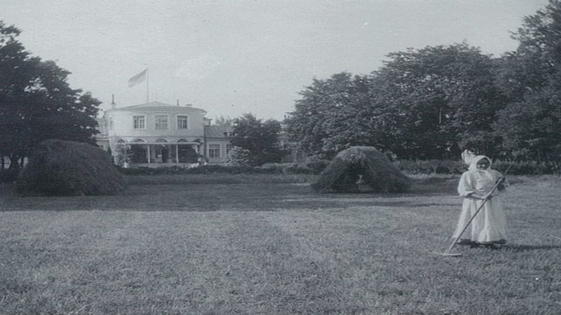луг перед усадьбой рябово архивное фото