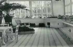 зимний сад дома всеволожских в рябово архивные фото (ВСЕВОЛОЖСК)