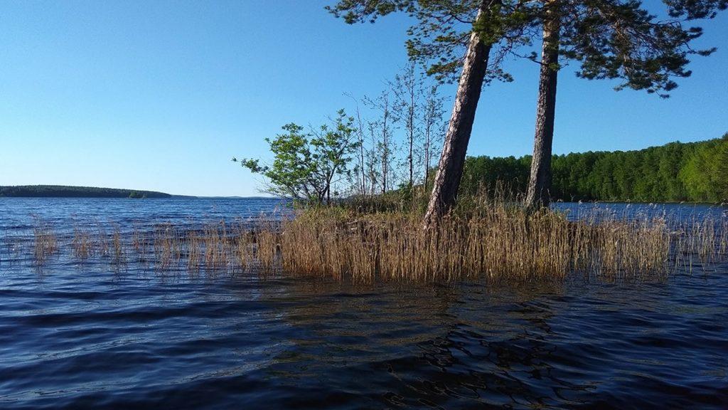 озеро сандал карелия