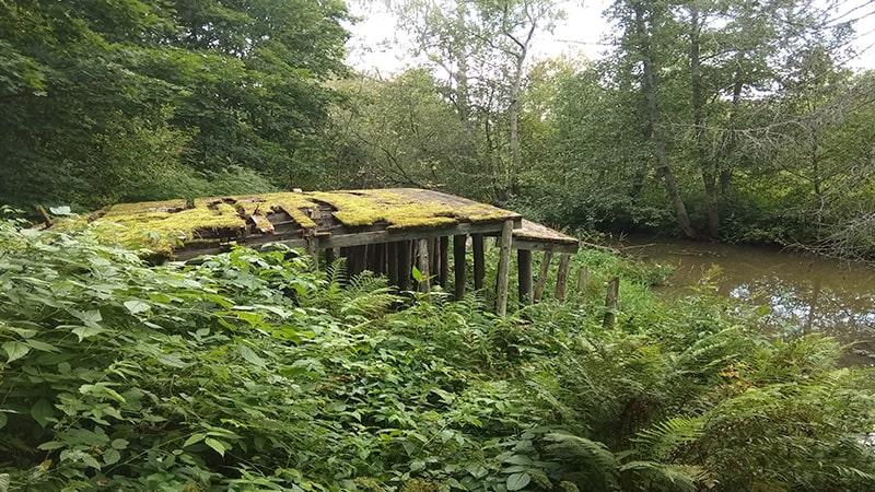 усадьба приютино старый мост