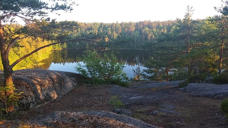природа ленинградской области ястребиное озеро