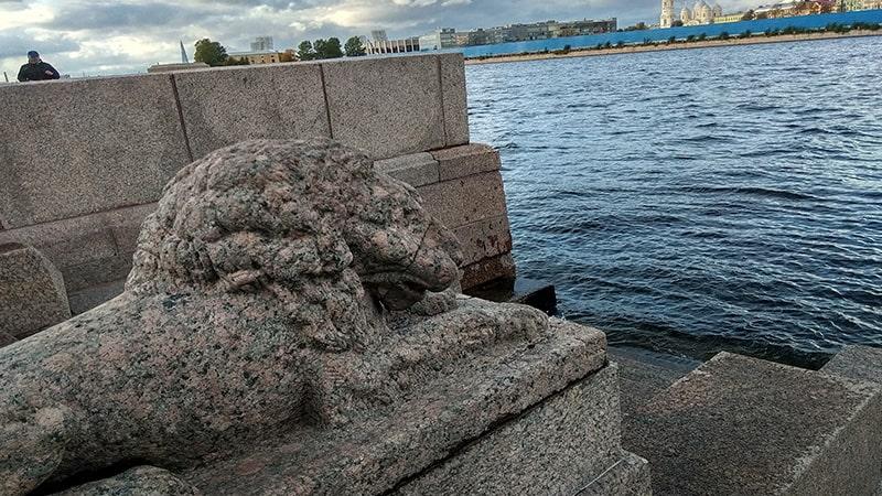 львы на набережной макарова петербург