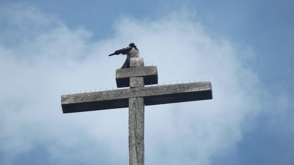 усадьба богословка
