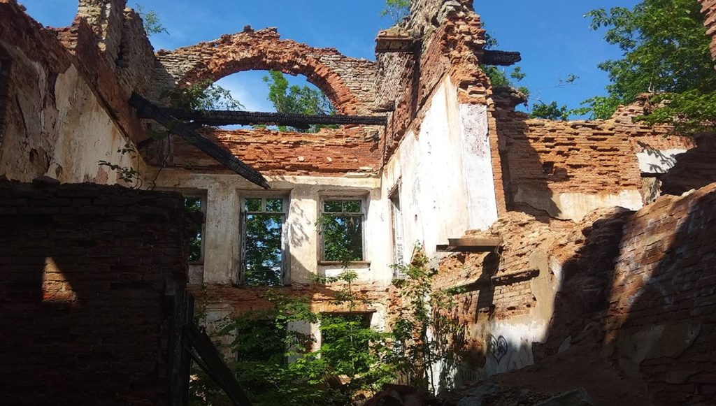 развалины усадьбы в селе лопухинка ленинградская область